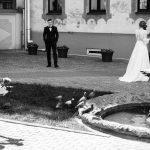 Kur meklēt kāzu video operatoru